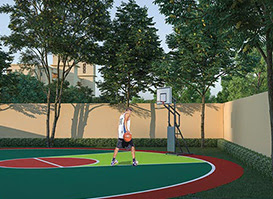 advitya homes basketball court