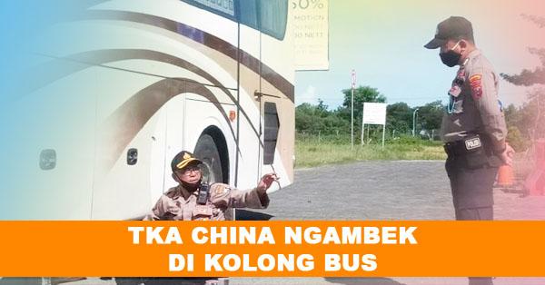 TKA China Ngambek di Kolong Bus