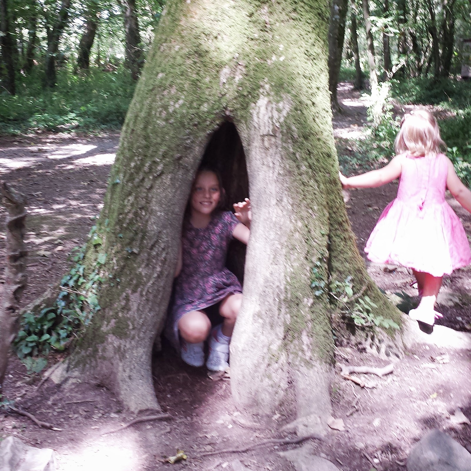 , A Woodland Walk at Scolton Manor with Jo #countrykids