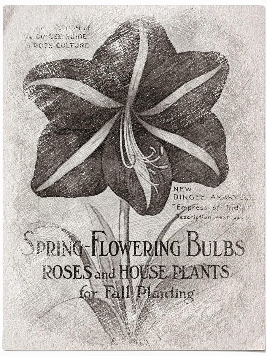 Spring Flowers Vintage Sketch.....