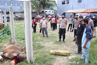 Idul Adha 1442 H, Polres Pelabuhan Makassar kurban 18 Ekor Sapi