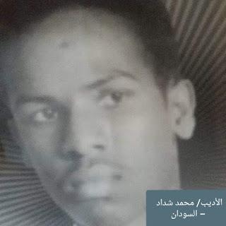 """"""" البيت الأبيض  """" مجموعة قصص قصيرة بقلم الأديب/   محمد شداد  - السودان   White House"""