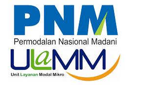 JOB in Lampung Desember 2016 – PT. Permodalan Nasional Madani (Persero)