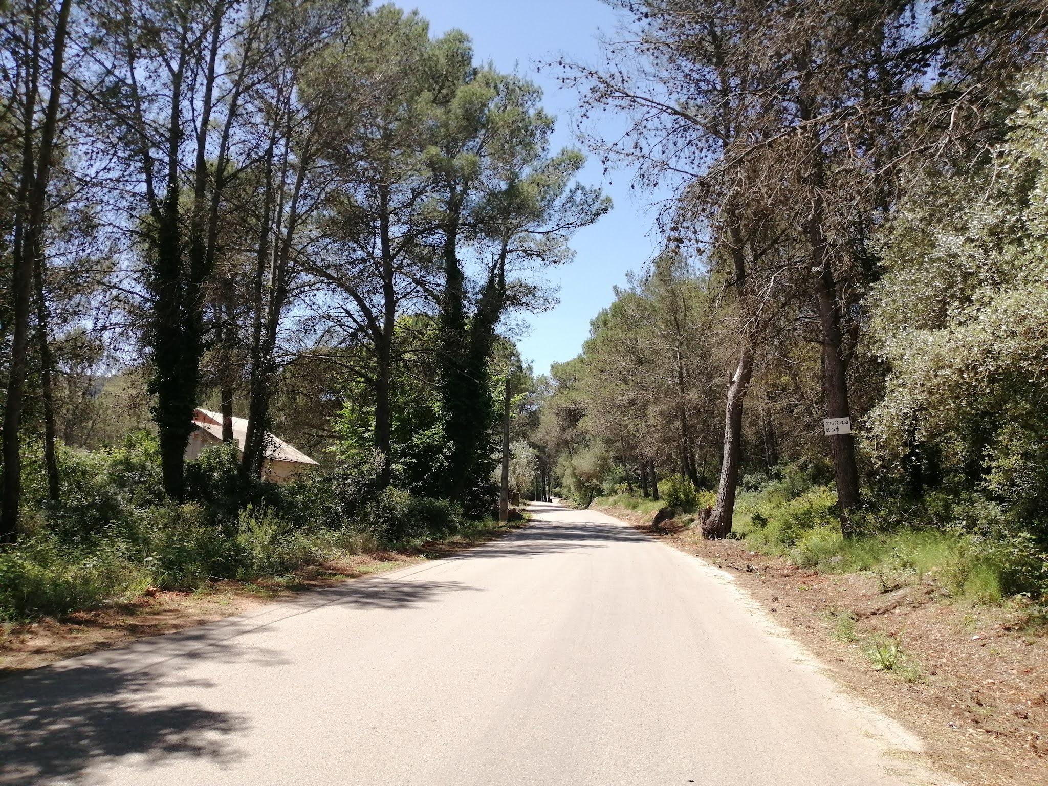 The road through la Llacuna, Valencia