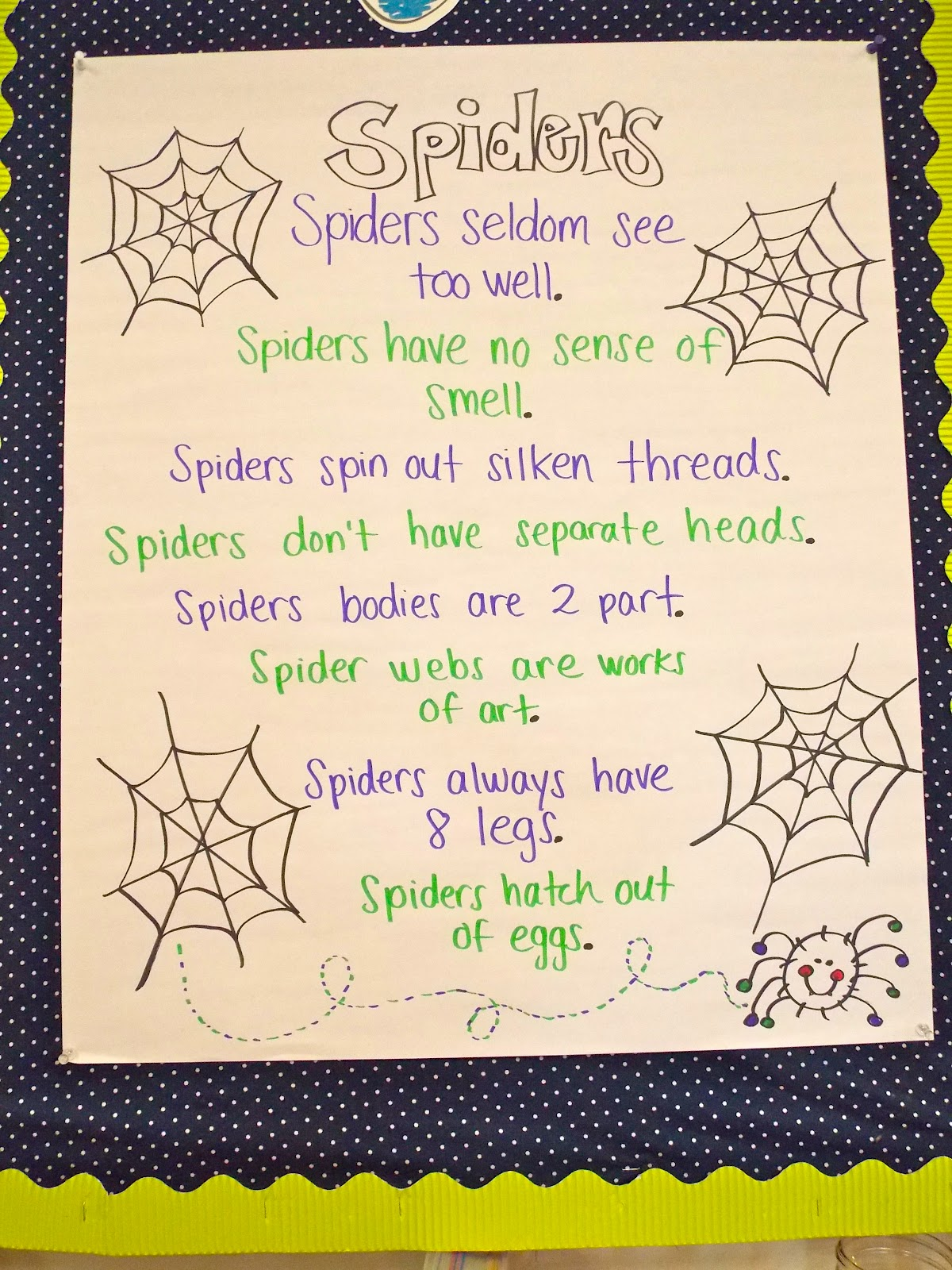 We Went Crazy For Spiders Last Week In My Clroom Learned More Than I Ever Wanted To Know And Are Even Going Have A Tarantula Visit On