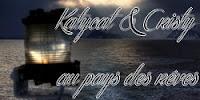 http://leslecturesdecristy.blogspot.fr/2015/07/quand-le-navire-part-au-pays-des-reves.html