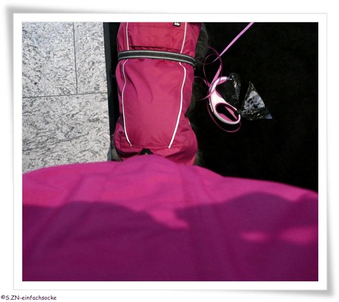 hundeblog einfach socke wie viel pink vertr gt ein haushalt. Black Bedroom Furniture Sets. Home Design Ideas