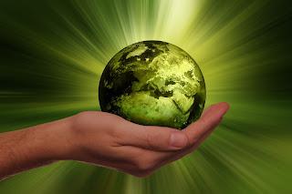 4 libros de sostenibilidad y medio ambiente más sorprendentes