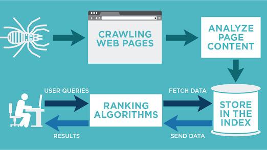 Quá trình Crawl thông tin từ website của bot tìm kiếm