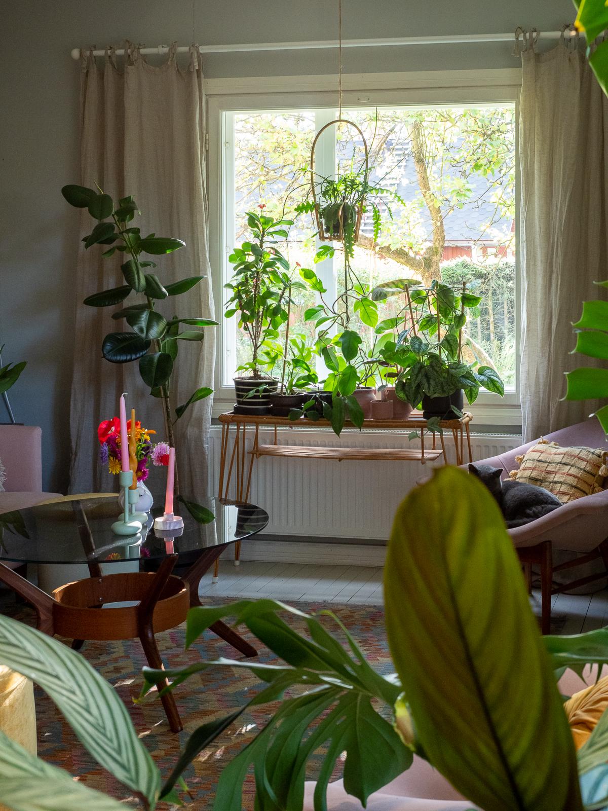 lisää tilaa viherkasveille