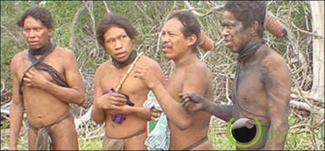 Suku Ayoreo Suku Pribumi