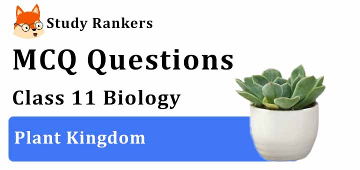MCQ Questions for Class 11 Biology: Ch 3 Plant Kingdom