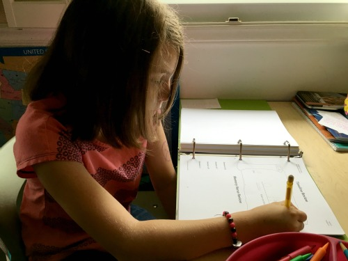 Using the kids' Bible curriculum from Grapevine