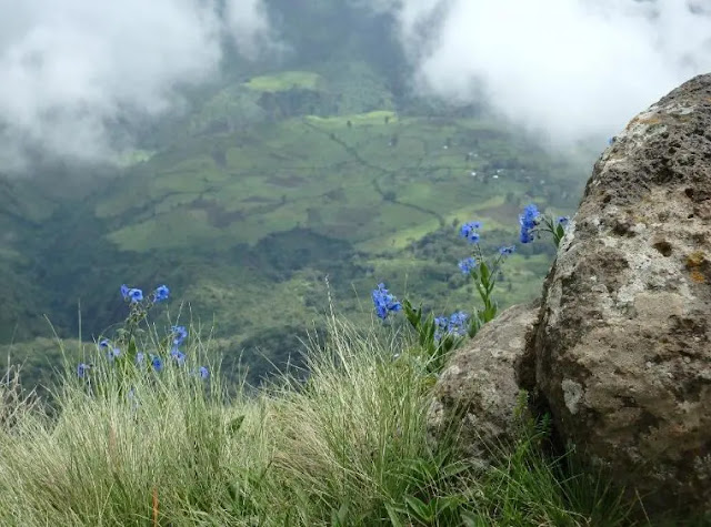 Simien Mountains National Park in Addis Ababa