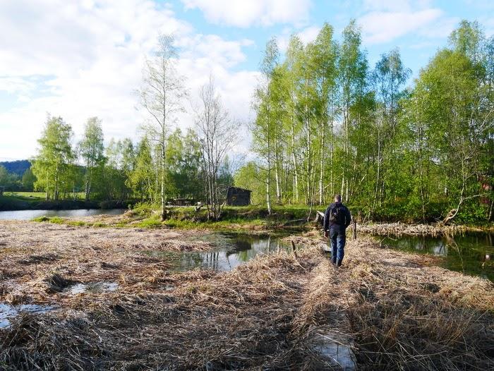 Oxslåtten, Veckefjärdens naturreservat