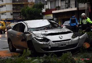 Santa Fe y Carranza: Cayó un árbol sobre un auto.