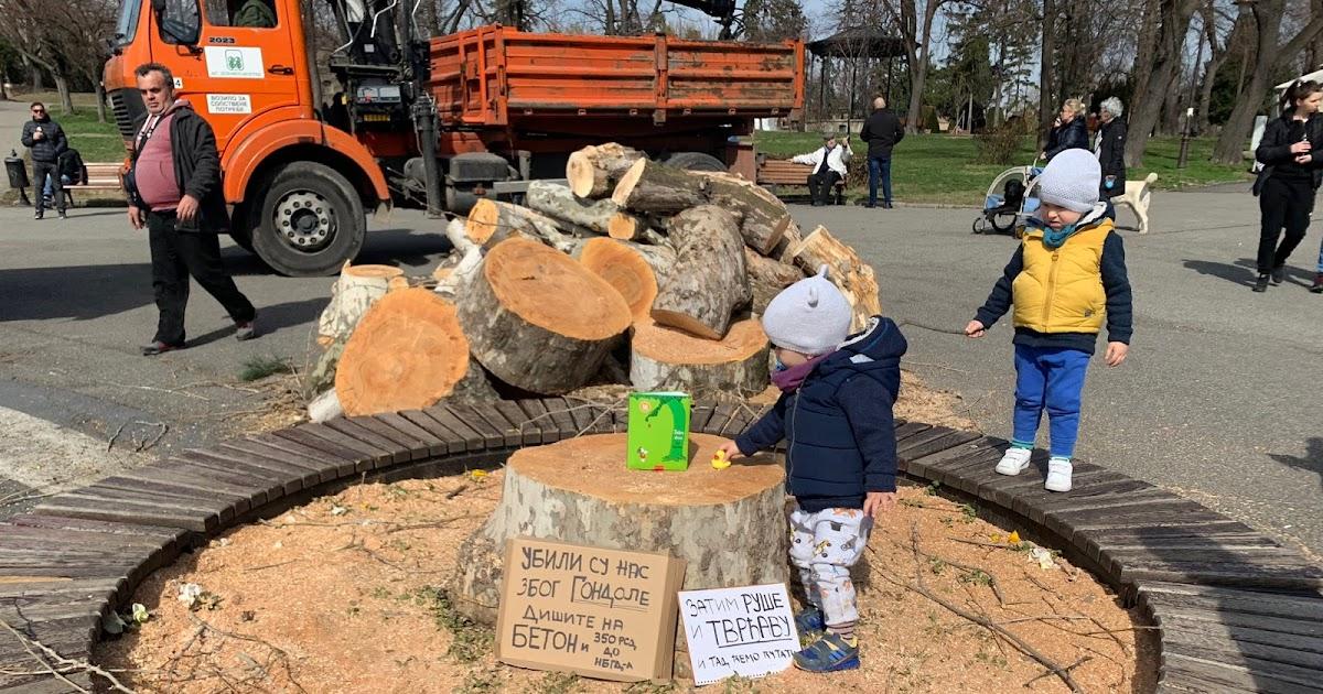 Posaditi drvo