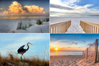 Gulf Shores Alabama Condominiums For Sale and Vacation rental homes by owner.