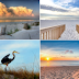 Gulf Shores Real Estate Sales & Vacation Rentals