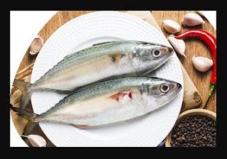 ikan-makanan-untuk-program-hamil