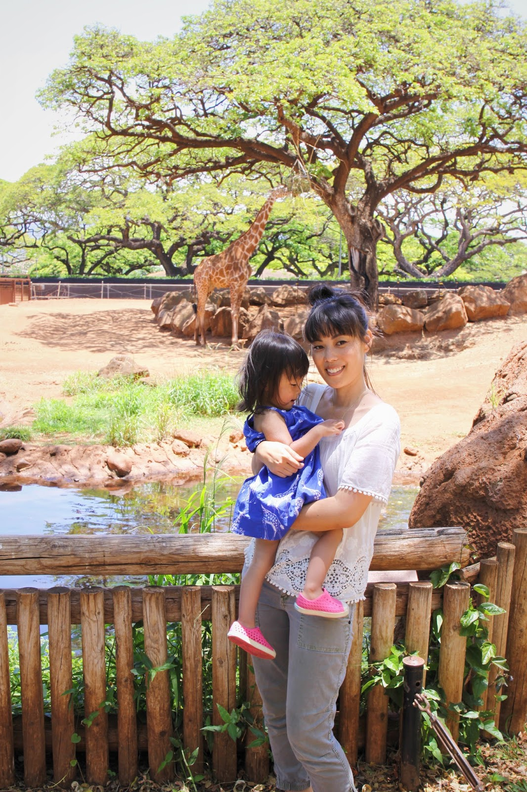 Oahu with a Toddler Honolulu Zoo and Dole Plantation The Less