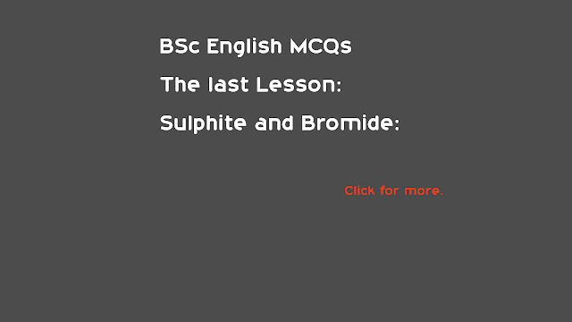BSc English The Last Lesson and Sulphite and Bromide