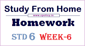 std 6 homework week 6
