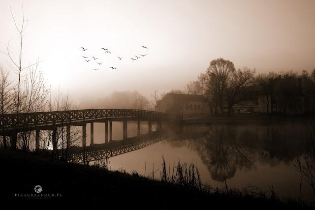 misty morning...Kończyce Małe