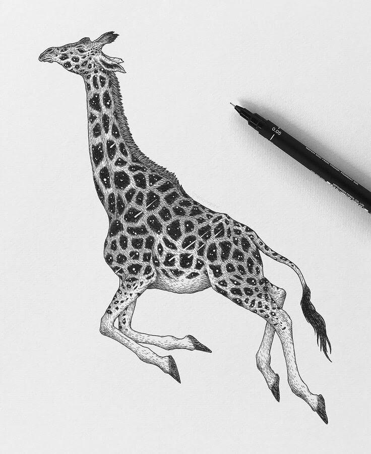 11-The universe giraffe-Chen-Naje-www-designstack-co