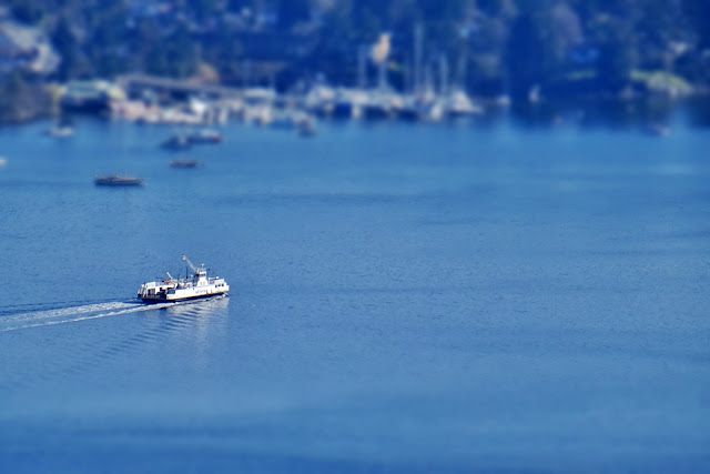 A ferry crosses the Saanich Inlet...