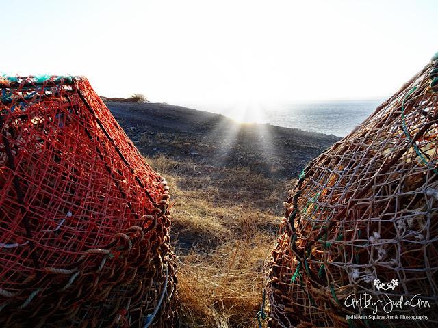 Newfoundland Scenery Prints