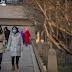 Κοροναϊός: Μπαράζ ακυρώσεων πτήσεων προς την Κίνα