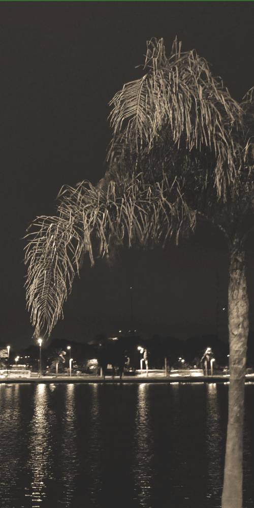 ambiente de leitura carlos romero cronica conto poesia narrativa pauta cultural literatura paraibana marco lima viagena espiritas espiritismo doutrina espirita federacao espirita paraibana