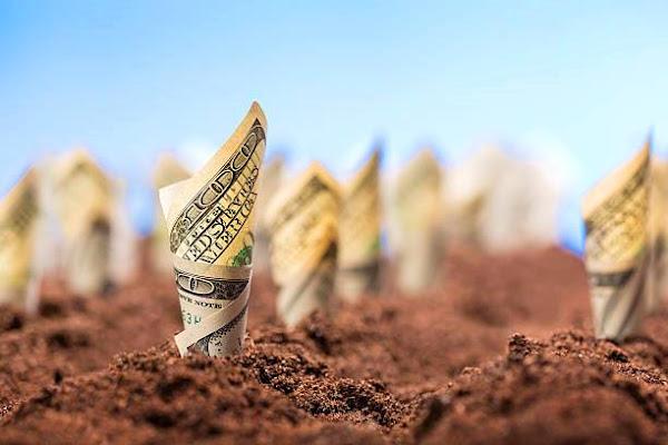 Как правильно инвестировать в землю, чтобы заработать в 2021-2022 году