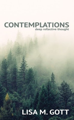 Contemplations by Lisa M. Gott