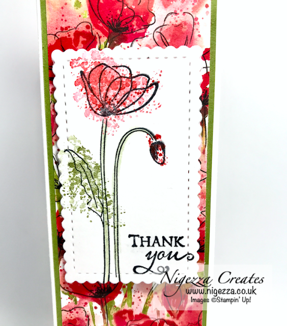Nigezza Creates with Stampin' Up! Mini Bottle Bag With Peaceful Poppies