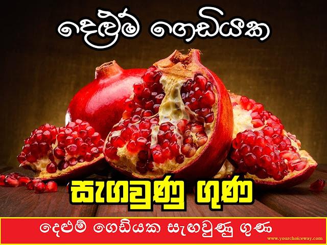 දෙළුම් ගෙඩියක සැඟවුණු ගුණ (Pomegranate - Delum) - Your Choice Way