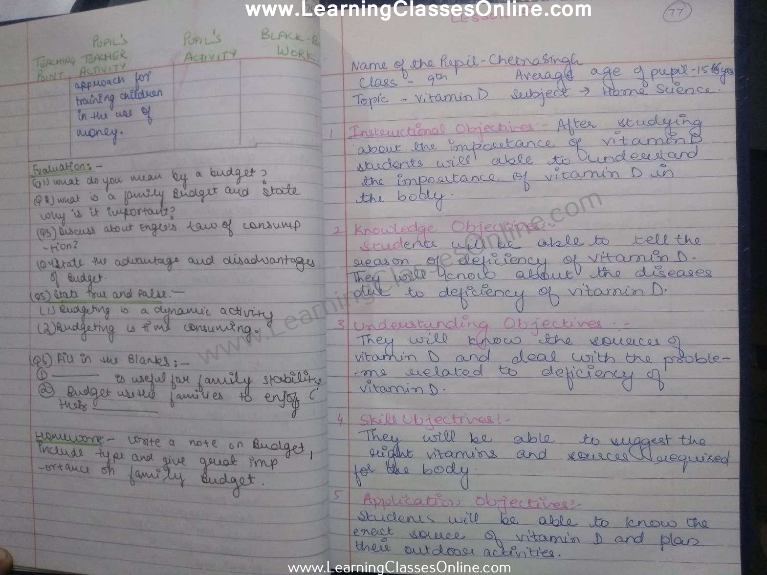 Vitamins Lesson Plan Home Science for Class 9 teachers free download pdf in English