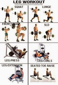 bodybuilding exercises for the legs  multiple fitness