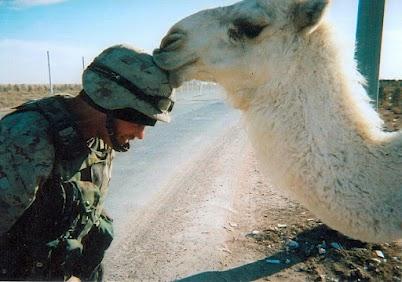Camel kindness