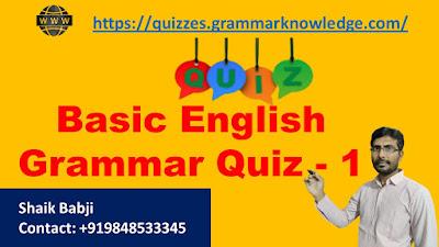 2Basic English Grammar Quiz - 2