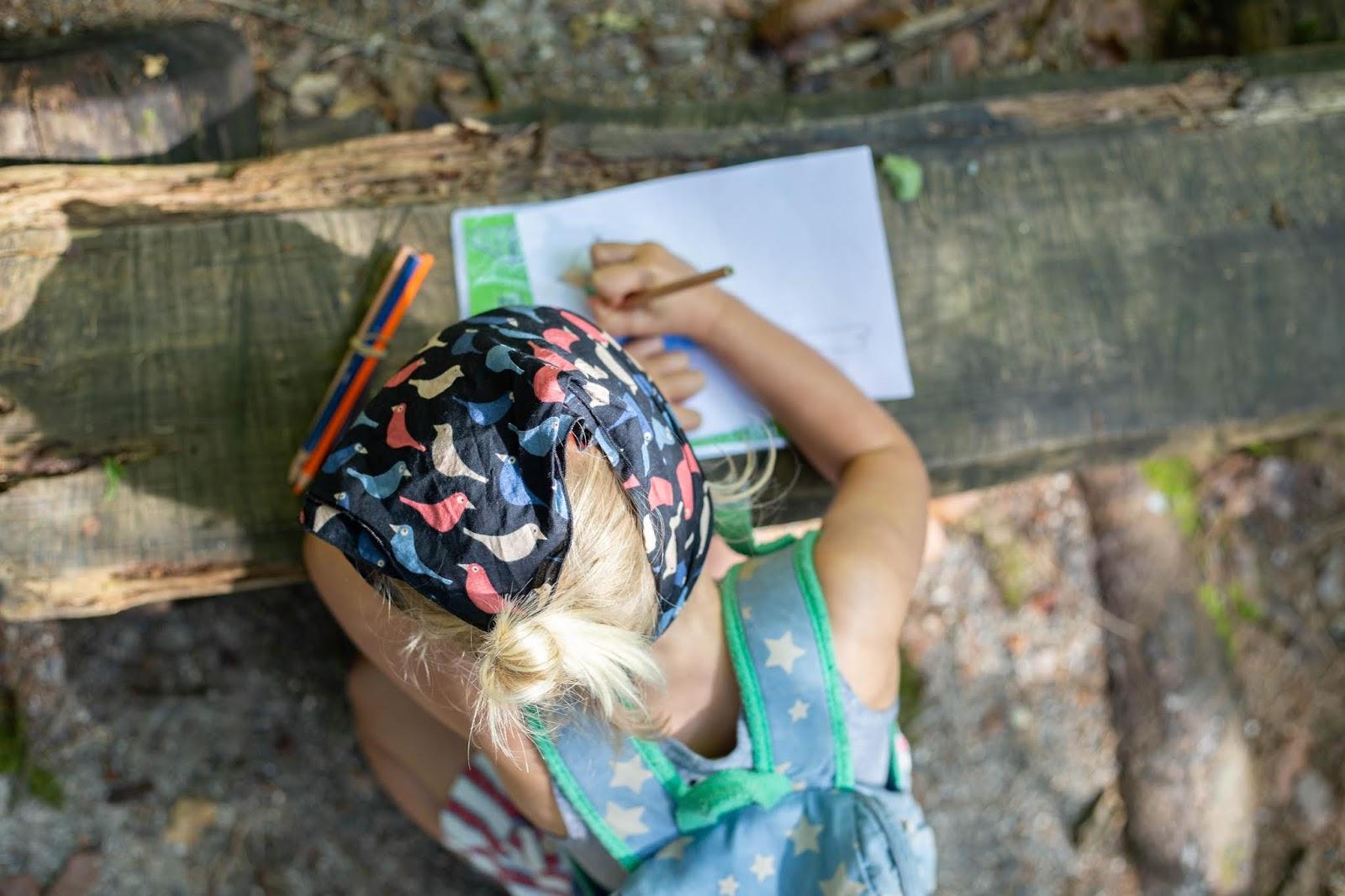 https://www.notebook.ldmailys.com/2019/07/une-chasse-au-tresor-dans-les-bois-chez.html