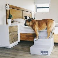 escadas para cães pesados