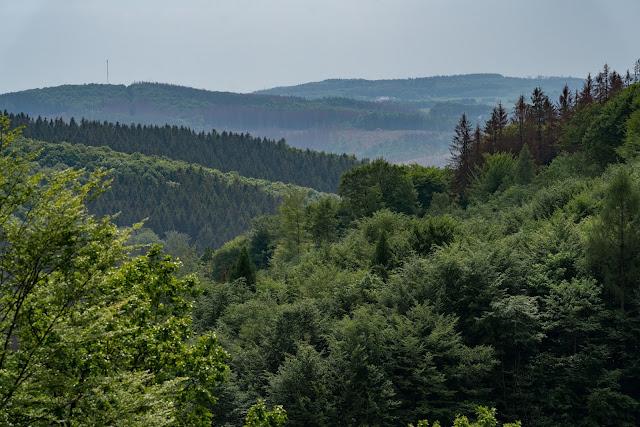 Pulvermühlenweg – Windeck | Erlebniswege Sieg | Wandern Naturregion-Sieg 11