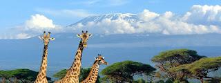Climbing Kilimanjaro Tour Company Reviews