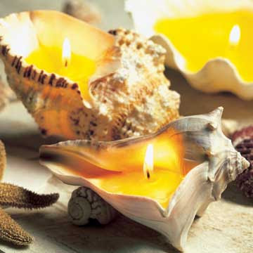 beach shell candles
