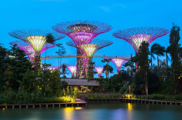 8. Gardens By The Bay