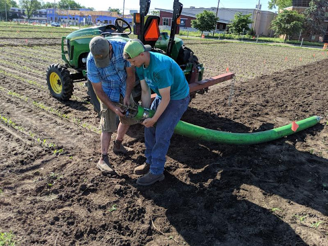 manure management research fall minnesota