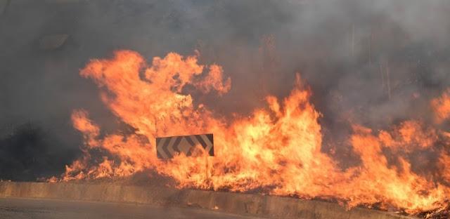 ارتفاع حصيلة وفيات الحرائق بايطاليا الى 5 اشخاص والرياح القوية لا تزال تعيق عملية الإطفاء