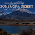 Prisoner of a Desert